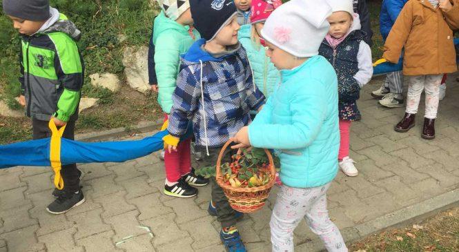 """Jesienny spacer – grupy """"Misie"""" i """"Króliki"""""""