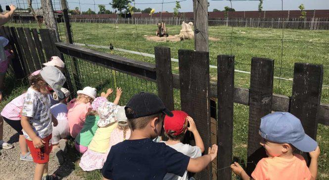 Wycieczka do Mini Zoo w Wojciechowie